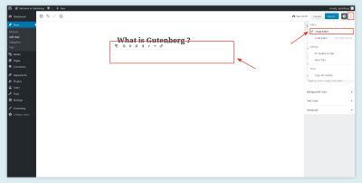 The visual editor in Gutenberg