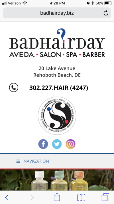 This is the first thing you see upon entering the Bad Hair Day website.