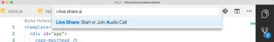 vs code command palette showing start audio call option