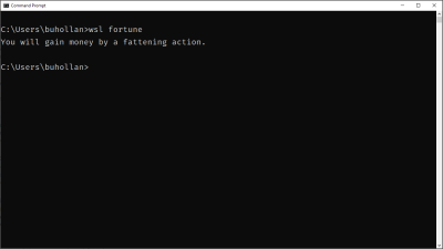 """The Windows Command Line executing the Linux """"fortune"""" program"""