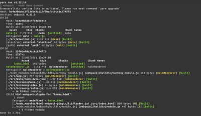 webpack compiler logs in development mode