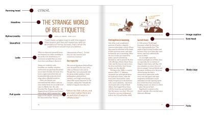 Anatomy of a magazine page