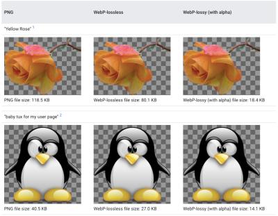Google WebP Gallery comparison against PNG