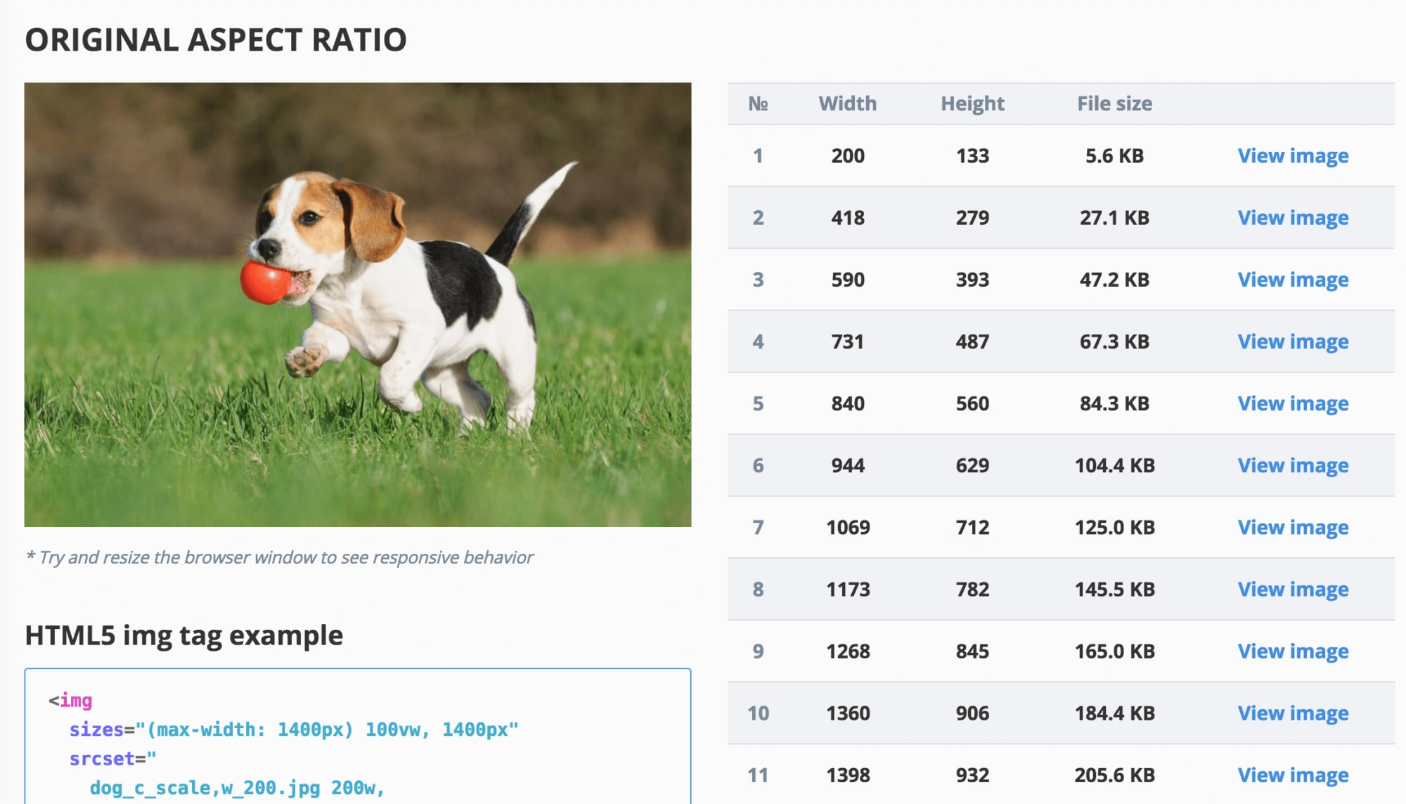 The Responsive Image Breakpoints Generator automates images and markup generation