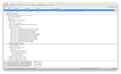 Screenshot of Wireshark output
