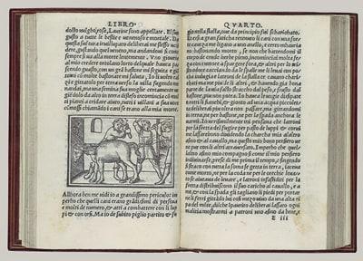 Book from Renaissance era