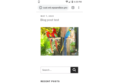 wordpress blog post demo image optimization mobile display