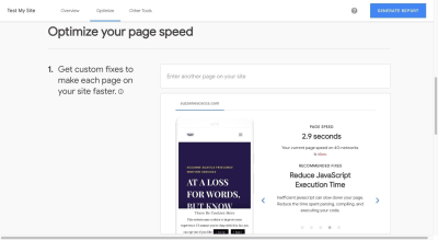 Test My Site results example