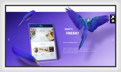 Xplode Marketing website prompts asymmetry with creative placement
