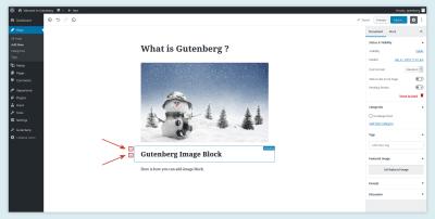 Déplacer le bloc dans Gutenberg