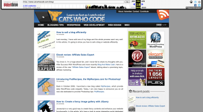 Cats Who Code website 2009