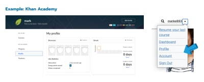 Khan Academy's user profile