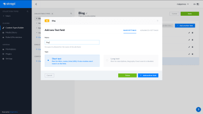 A screenshot of the Strapi dashboard - adding a new text field