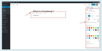 Gutenberg Text Editor Options