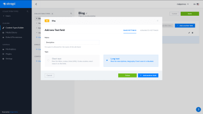 A screenshot of the Strapi dashboard - creating a new text field