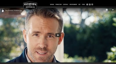Aviation Gin website 2020