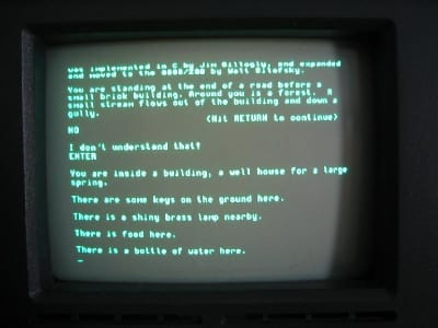 A picture of an actual text adventure from back in the day