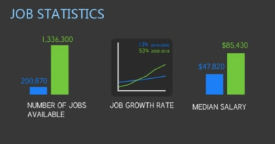 Visual.ly infographic: web designer vs. web developer job statistics