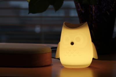 Humanizing technology helps make it more accessible: Susan's personalized owl glows in response to her voice, letting her know she is being heard and understood.