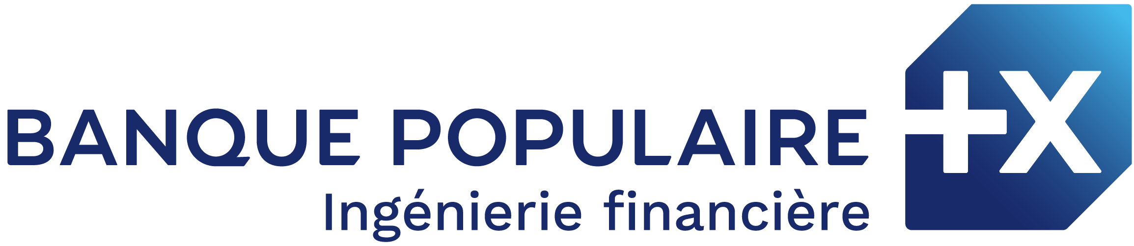 OUEST INGENIERIE FINANCIERE