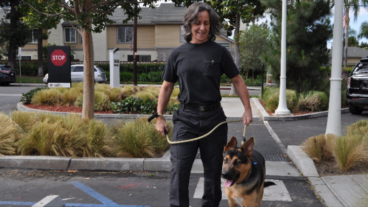 Chapman Marine Corps veteran 'lives for the present,' with help from rescue dog