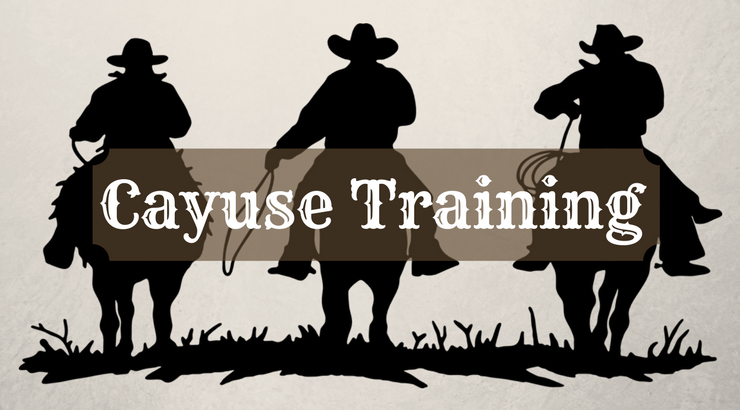 Cayuse IRB November Training