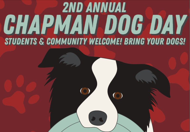 Student-Neighbor Dog Day Returns to Chapman!