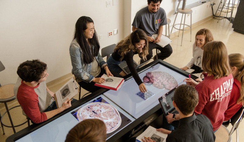 Chapman University Ranks in Top 10 of the Nation's Best Undergraduate Health Sciences Programs