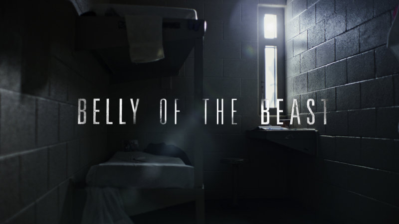 Belly of the Beast Available Friday Oct. 16