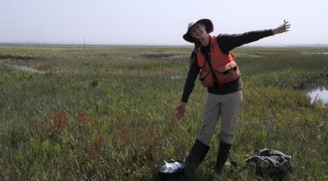 Photo: Money in the marsh?