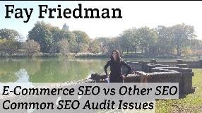 Video: Fay Friedman On E-Commerce SEO vs Other SEO & Common SEO Audit Issues #114