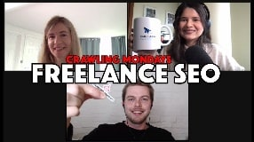 Video: How to Become a Successful Independent or Freelance SEO Consultant