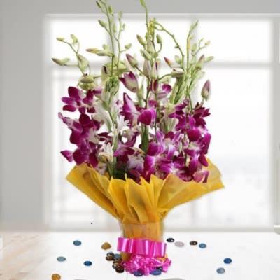 Orchids Ferns