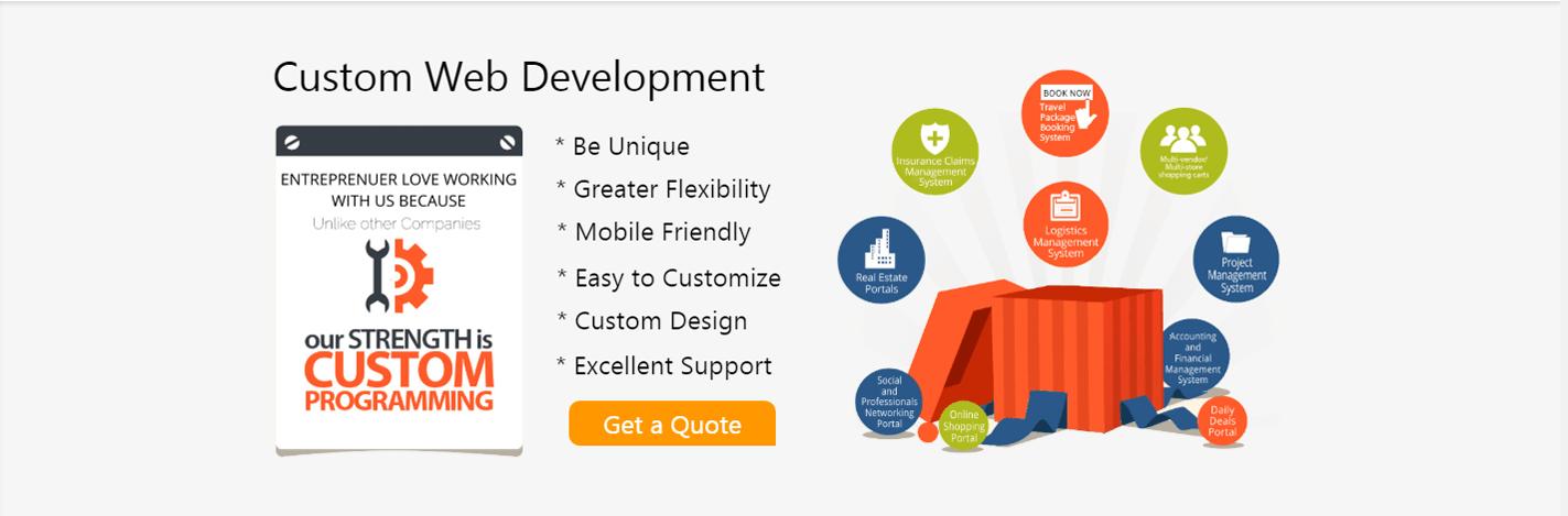 Custom web development slider insignia