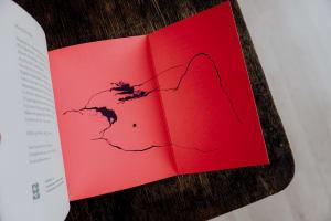 Motýlí kniha