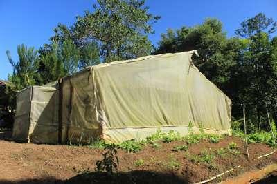 Un pequeño invernadero de produción de plantas aromáticas.