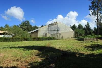 El invernadero más grande destinado para la produción de vegetales.