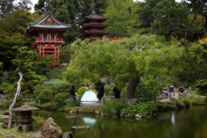 The Japanese Tea Garden in Golden Gate Park.