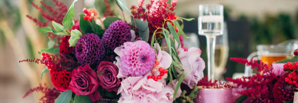 Flower therapy: What can your flowers colours convey