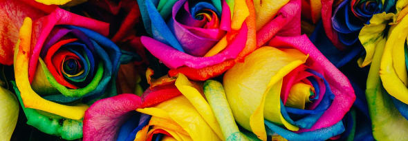 DIY - How To Make Holi Colors With Flowers At Home