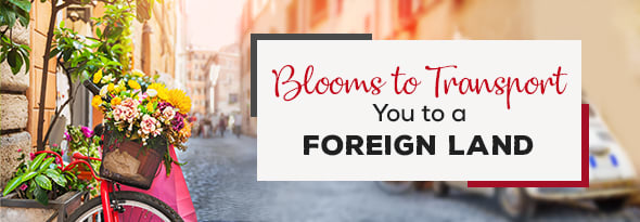 Blooms to Transport You to a Foreign Land