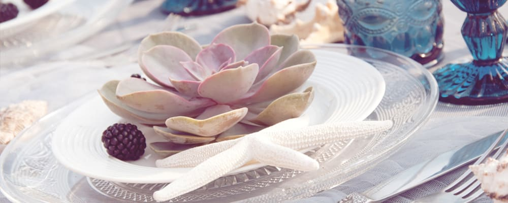 Succulents-on-Dinner-Table