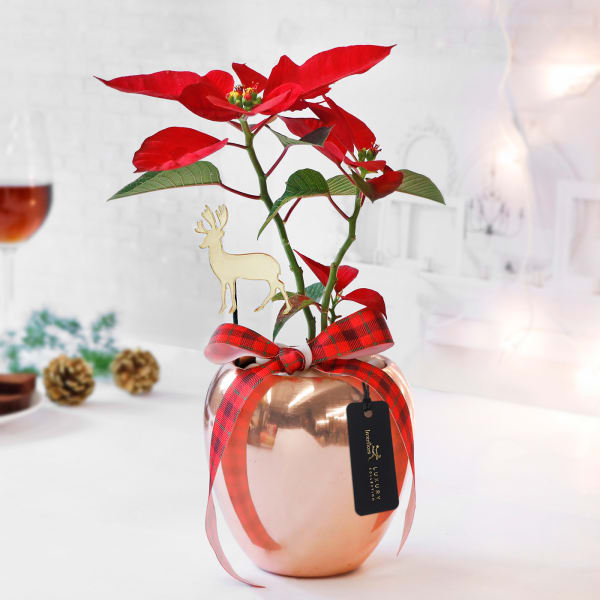 Magic of Christmas in Rose Gold Vase