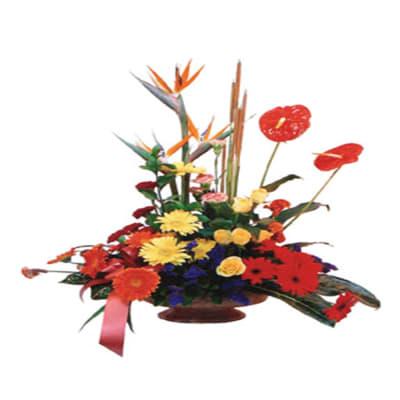 Arrangement of Mixed Coloured Flowers