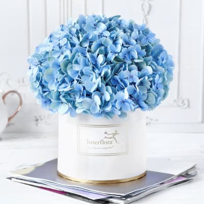 Blue Beauty Flower Box