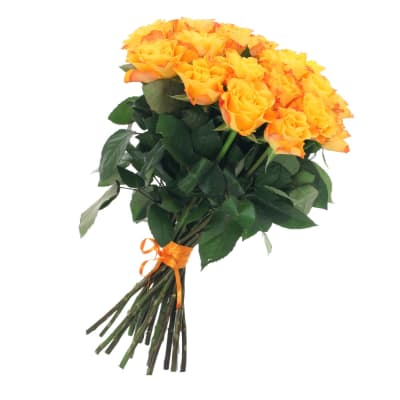 Bunch of 21 Yellow Roses Gold