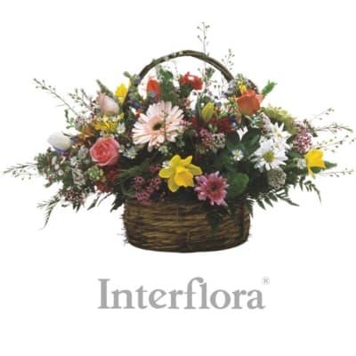 Burst of spring order flowers online interflora india burst of spring mightylinksfo