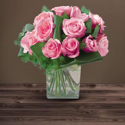 Olympie rose