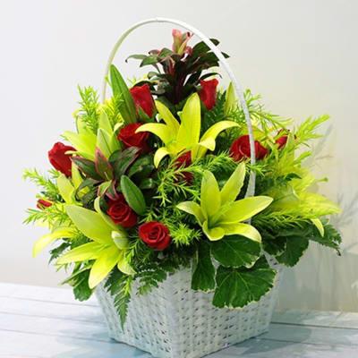 Red & Green Flowers in Basket