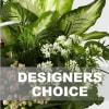 Arrangement of Plants Online